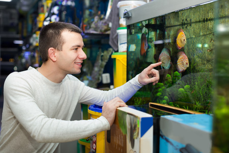 tropical tank: Smiling young guy in white pullover choosing tropical fish in aquarium tank