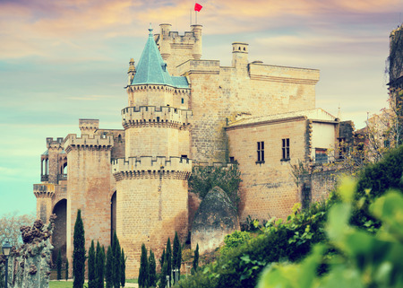 toned: Toned photo of  medieval castle