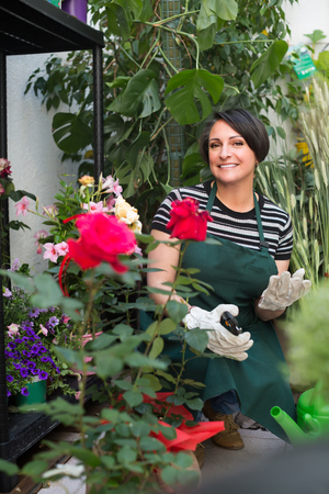 selling service: Smiling female florist caring of flowers with horticultural tools in flower shop