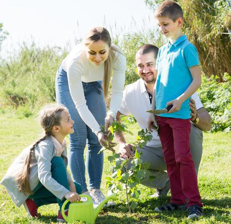 sembrando un arbol: ? Familia alegre de cuatro plantar un �rbol al aire libre en un clima soleado Foto de archivo