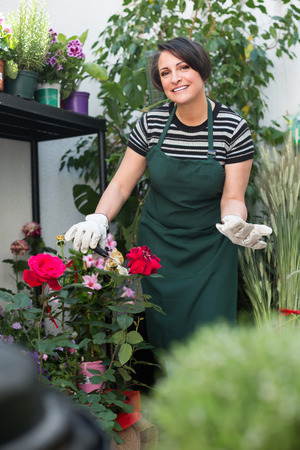 horticultural: Smiling female florist caring of plants with horticultural tools in flower shop Stock Photo