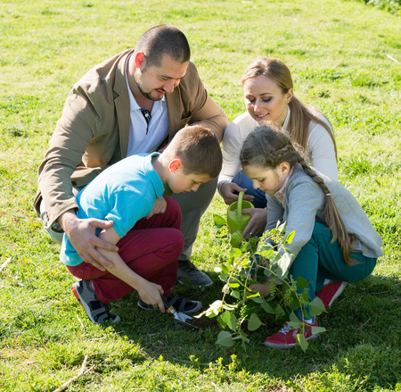 sembrando un arbol: Smiling  European family of four planting a tree outdoors in a sunny weather