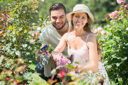 floriculturist: Young married couple planting garden plants in summer day
