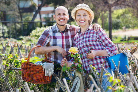 looking after: Smiling happy positive senior couple looking after flowers in the garden Stock Photo