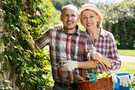 looking after: Smiling senior couple looking after flowers in the garden