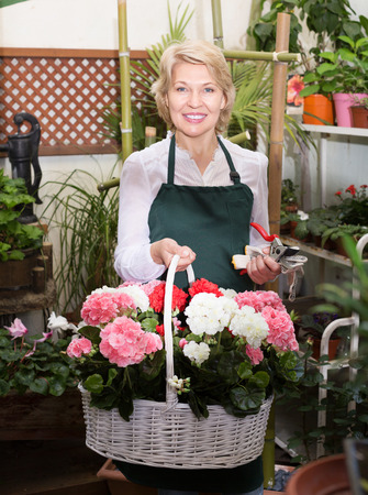 selling service smile: Portrait of glad mature florist smiling and having a basket with hydrangea in floral shop