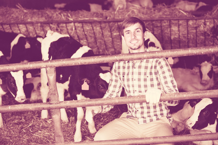 stroking: ?Cheerful smiling man happily stroking cows on the farm