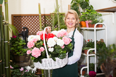 selling service smile: Cheerful smiling woman florist standing with multicolored hortensia flowers in gardening counter