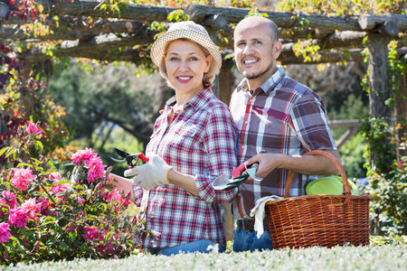 looking after: Ordinary cheerful  positive senior couple looking after flowers in the garden Stock Photo