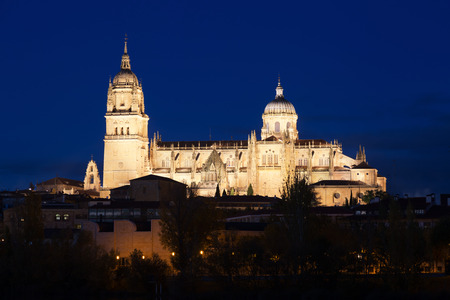 castile leon: Night view of  Cathedral of Salamanca. Castile and Leon, Spain