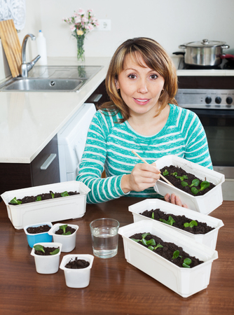 sowing: Female gardener in green sowing seedlings at  kitchen