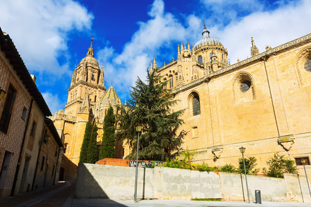 castile and leon: Closeuo of Cathedral of Salamanca in sunny  day. Castile and Leon, Spain