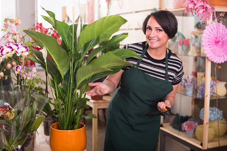 horticultural: cheerful woman florist holding horticultural tools in gardening counter