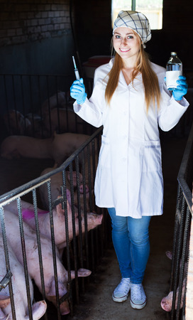 swine flu vaccines: Cheerful woman veterinarian in white coat holding syringe and vial in pigsty