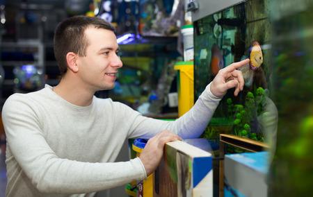 fish tank: Young guy choosing tropical fish in aquarium tank Stock Photo