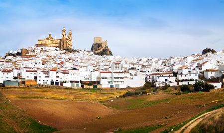 andalusian: General view of  andalusian town.  Olvera