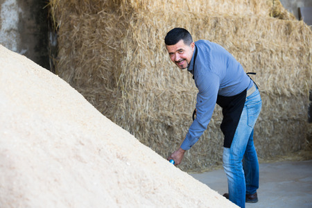 trenching: Positive man standing with metallic spade in hay hangar Stock Photo