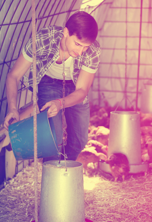 henhouse: Male farmer giving carrying stuff to chickens in henhouse Stock Photo