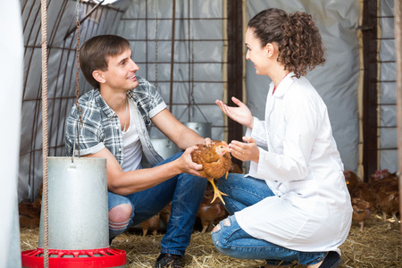 granja avicola: Young woman veterinarian consulting farm worker on poultry farm