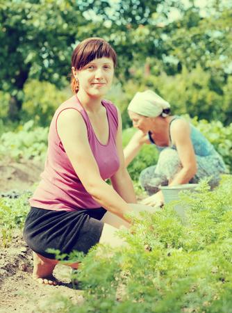 eradication: Two women working in her vegetable garden