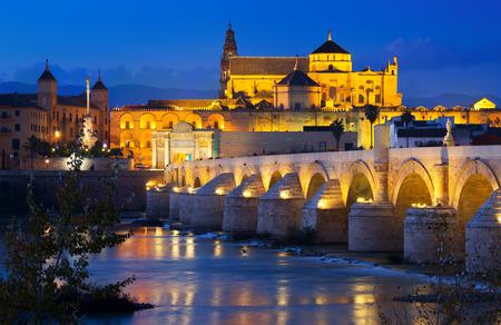 Mosque of Cordoba and Roman bridge in night.  Andalusia, Spain Stock Photo