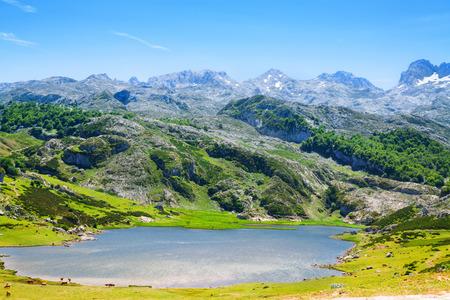 View of lake Ercina in summer. Asturias,