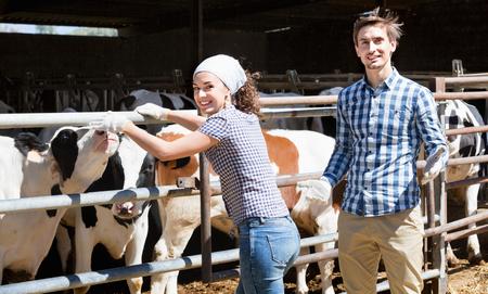 diligente: Dos personas diligentes alegres que aplauden las vacas en el hangar y la sonrisa Foto de archivo