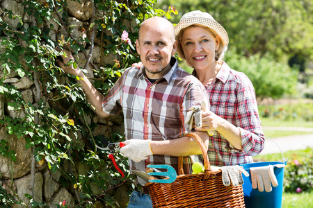 looking after: Happy senior couple looking after flowers in the garden