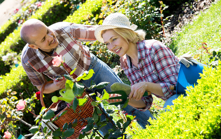 looking after: Smiling senior spouses looking after flowers in the garden on a sunny day Stock Photo