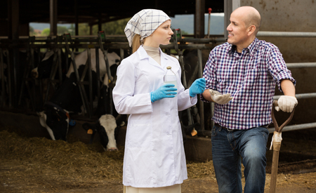 scientific farming: Serious woman veterinarian with glass bottle talking to farmer next to cows on farm Stock Photo