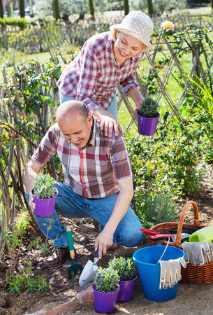 Cheerful charming positive senior couple looking after flowers in the garden