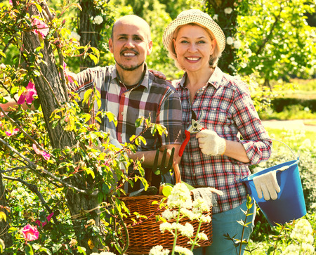 looking after: Positive senior couple looking after flowers in the garden Stock Photo