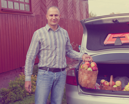demure: Guy puts apples harvest in the trunk of car