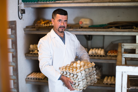 checking ingredients: Male fowl-farm worker packing fresh eggs into carton indoors Stock Photo