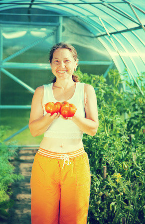 forcing bed: Smiling woman with tomato in the hothouse