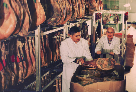 technologists: Ordinary positive butchery technologists in white gown checking joints of iberico jamon Stock Photo