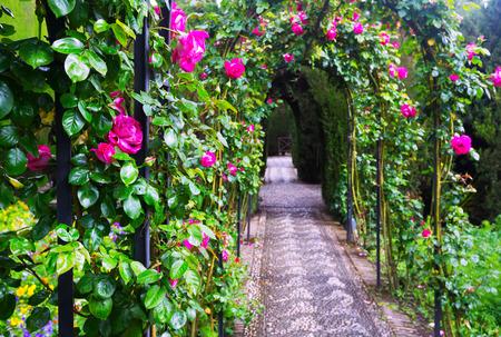 porch scene: French formal garden at Generalife. Granada,  Spain