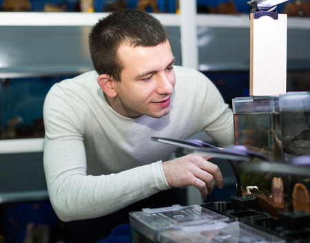 petshop: Young guy in white pullover choosing tropical fish in aquarium tank Stock Photo