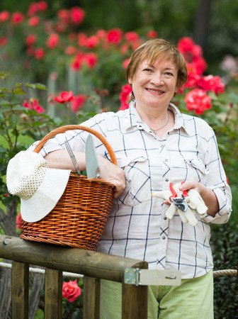 horticultural: smiling senior woman gardener holding basket and horticultural tools in garden on sunny day