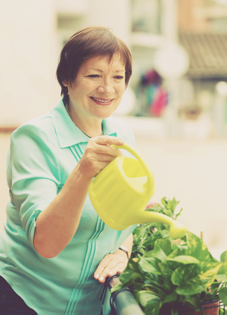 decorative balcony: Portrait of mature woman watering domestic plants on terrace Stock Photo