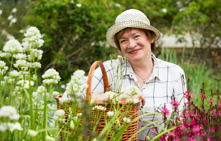 glad mature woman gardener having horticultural instruments in basket on summer day