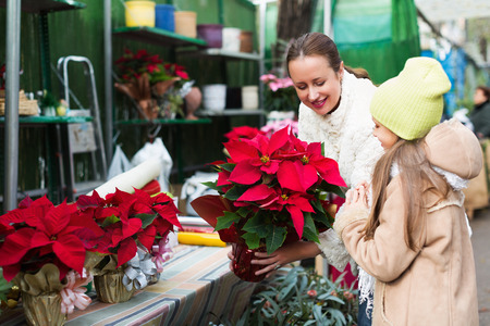 5s: Happy mom with excited child buying Christmas star flower in market. Focus on woman