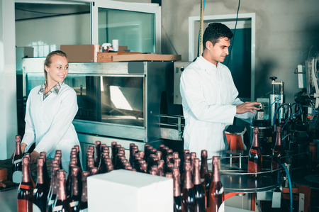 wine register: Two friendly colleagues holding newly produced bottles of wine on winery manufactory Stock Photo