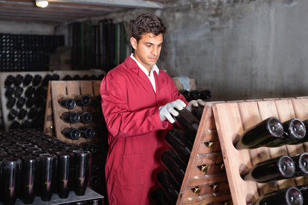 attentive: Attentive man winery employee wearing coat working in aging section with bottle racks in cellar