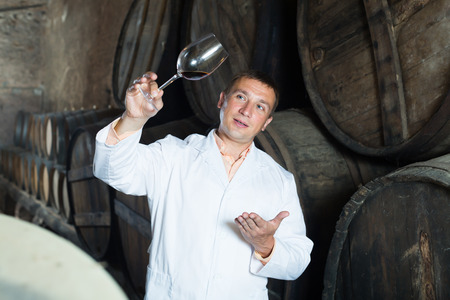 laboratorian: Glad taster posing with glass of wine in winery cellar