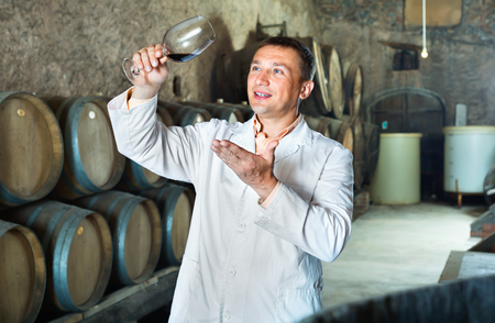 Glad  friendly professional taster posing with glass of wine in winery cellar