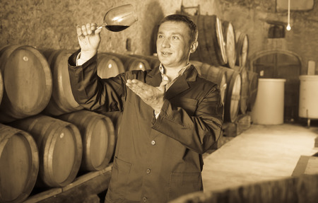 taster: Taster posing with glass of wine in winery cellar Stock Photo