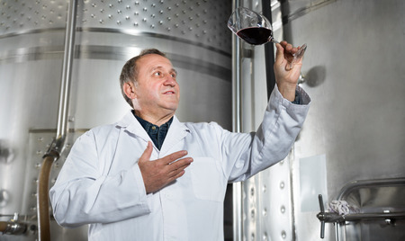 estimates: Mature male with the glass of the wine estimates his quality Stock Photo