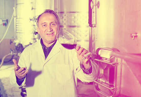 diligent: Diligent smiling wine maker controls quality of wine at winery Stock Photo