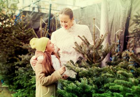5s: Cute girl with mom choosing New Years tree. Focus on girl